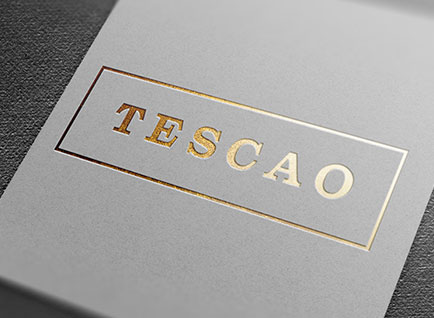 Tescao Logo Design